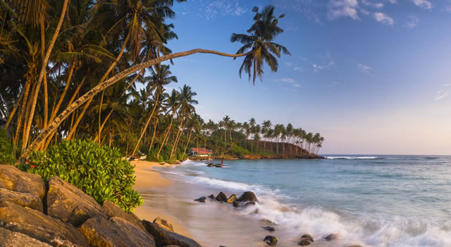 Sri Lanka Christmas Package